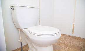 $39 Toilet Tune-Up, Plumbing Inspection and Water Heater Flush