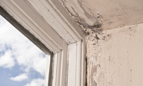 $269 for 4 Hours of Wood Rot Restoration and Repair