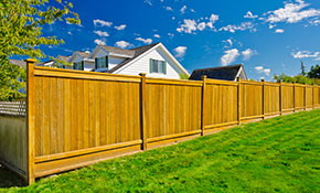 $1,699 for a 6-Foot Cedar Privacy Fence - Up to 50 Linear Feet