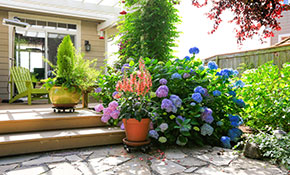 $2,520 Landscaping Package--Plants and Installation Included