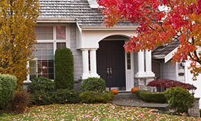 $540 for 12 Hours of Landscape Maintenance Plus Free Debris Removal