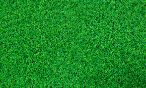 $1,800 for up to 100 Square Feet of Professional Artificial Turf Installation