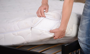$99 For Mattress Steam Cleaning  (Queen Size)