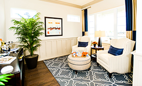 $125 for 1.5 hours of Professional Interior Designer/Decorator Consultation