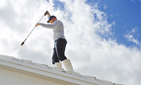 $300 for Roof Cleaning and Free Moss Treatment