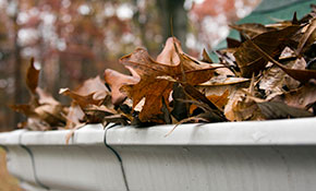 $79 for Gutter Cleaning, Roof Debris Removal, and a Gutter Tune-Up