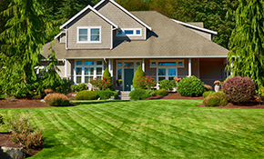$1,499 for 12-Month Lawn/Landscape Maintenance Package