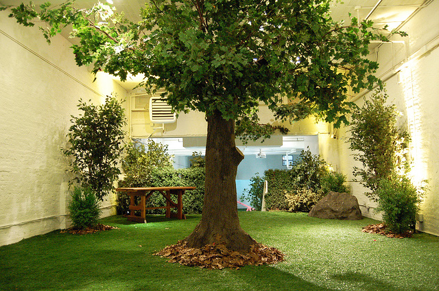 Park here new york 39 s indoor park for Indoor gardening nyc