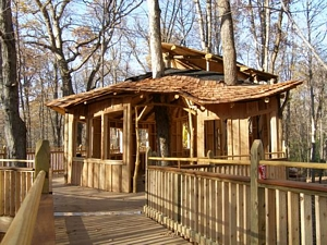 Wide paths and doorways increase accessibility of the treehouses
