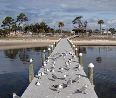 Navarre Nature Walk Park