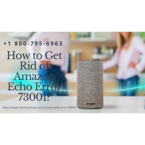 Get Instant Solution Fix Amazon Echo Error 73001 | 1-8007956963 Call Anytime