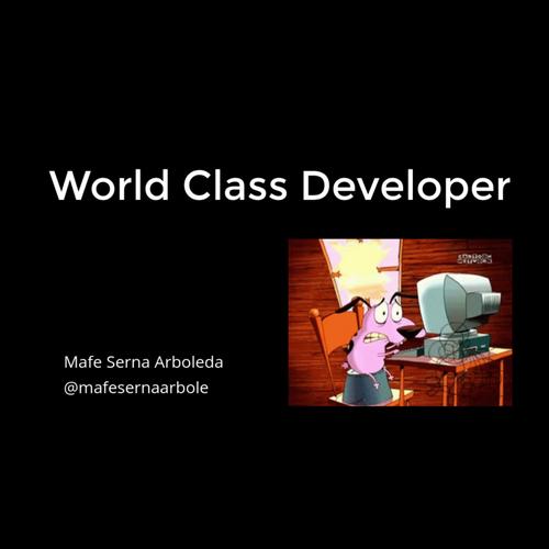 World Class Developer