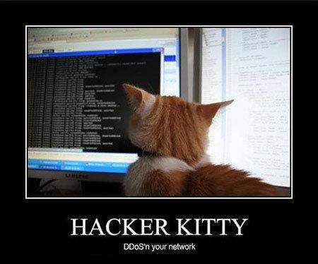 source: https://www.techeblog.com/top-5-most-notorious-computer-hackers/