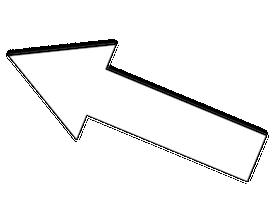 VERT X