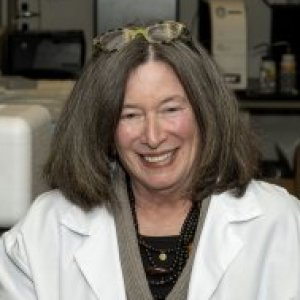 Barbara D. Boyan, Ph.D.