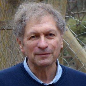 Stuart A. Newman, Ph.D.