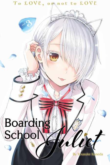 cons of boarding school