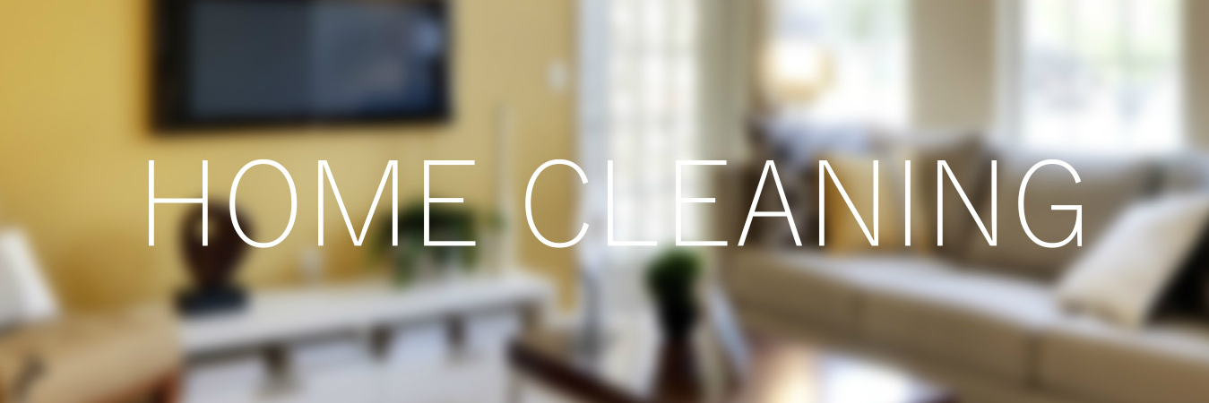 Licensed Office Cleaning