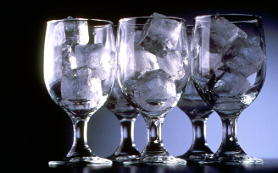 Restaurant Ice Makers
