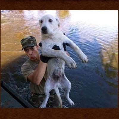 Top humane society Dell City TX 31.93 -105.2