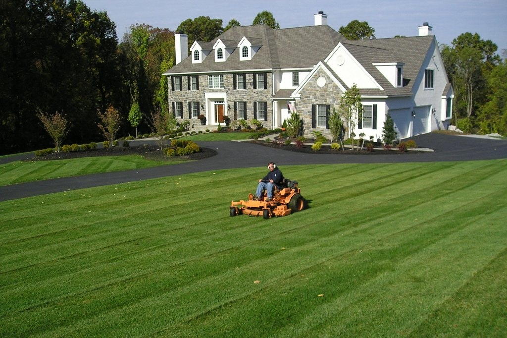 Best Landscaping Services