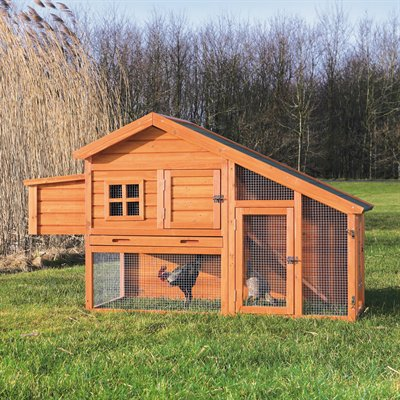 Custom Chicken Coop