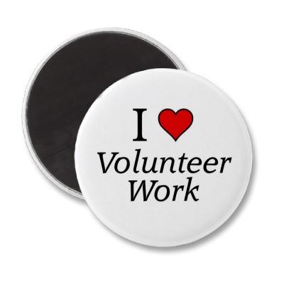Professional volunteer programs