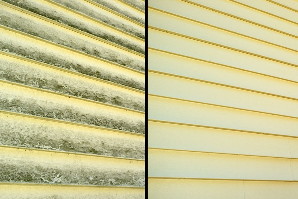 Best Home Siding