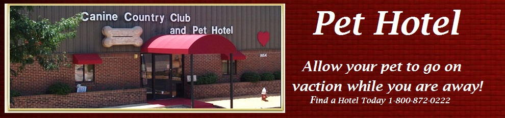 Pet Hotels for your pampered pet