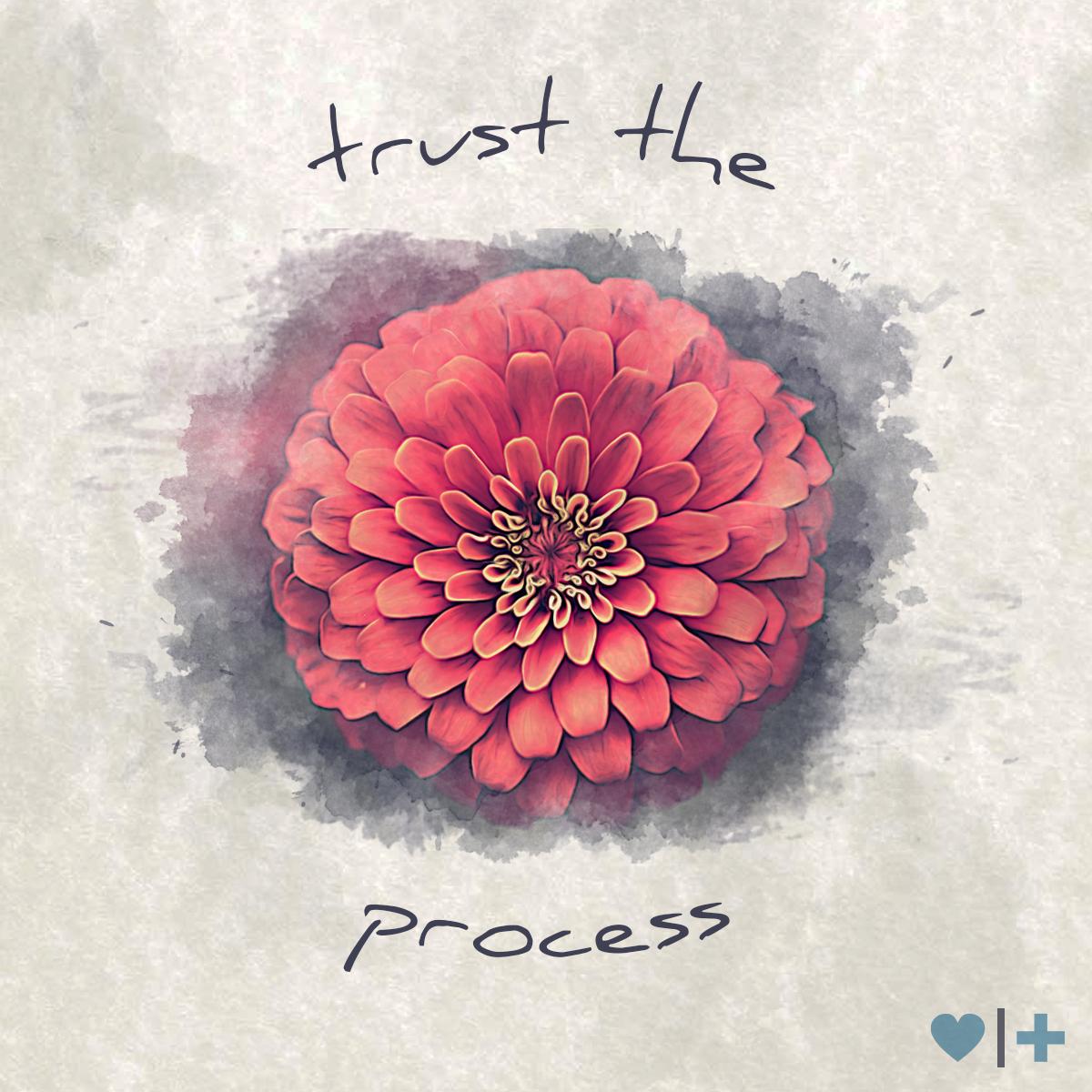 affair-recovery_survivors-blog_christine_trust-the-process