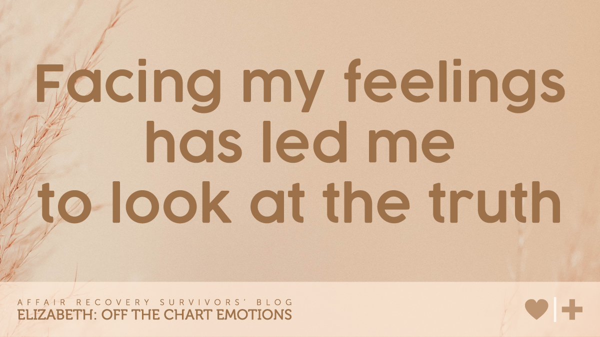 facing my feelings has led me to look at the truth-survivors blog-elizabeth-off the chart emotions
