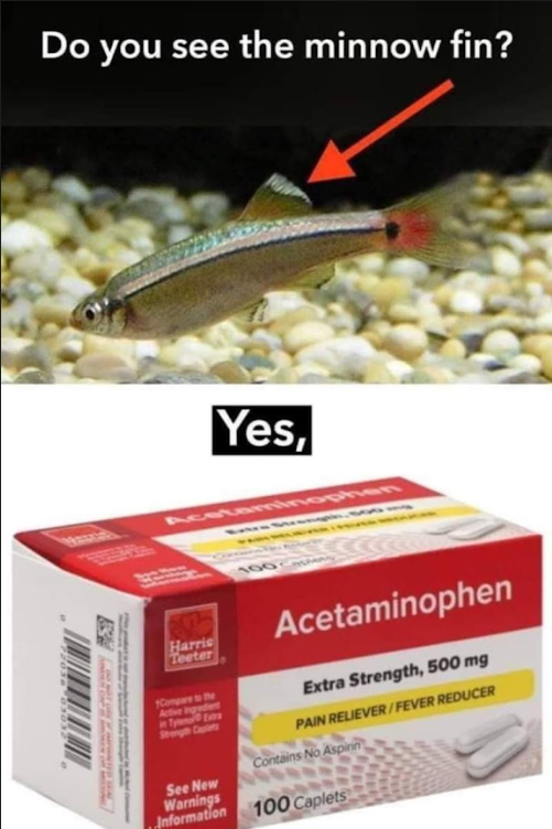 you see the minnow fin - yes acetaminophen