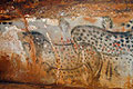 rock art news, female painters, trust for african rock art