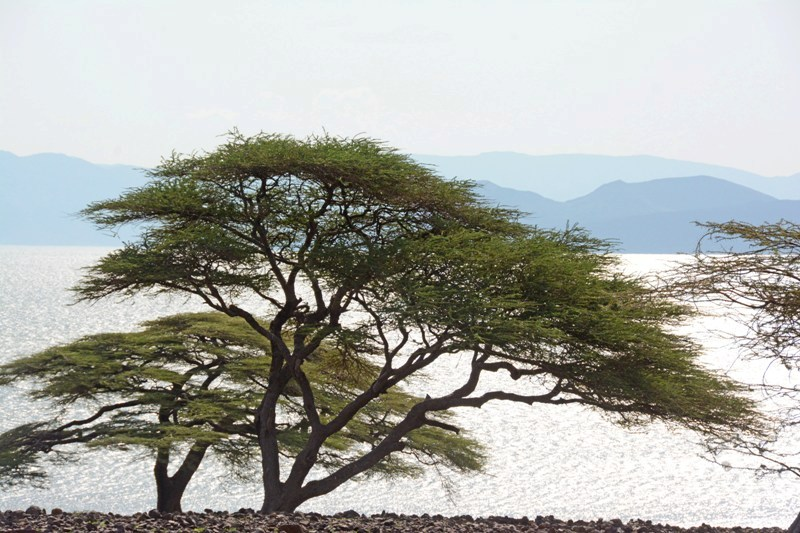 Lake Turkana