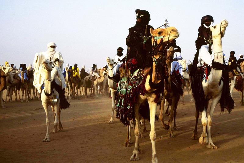 camels rock art