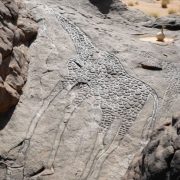 Dabous Giraffes, African Rock Art