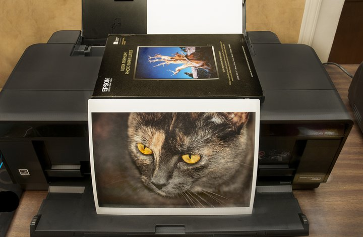 AI-AP | StreetTests » The Joy of Printing with the Epson SureColor