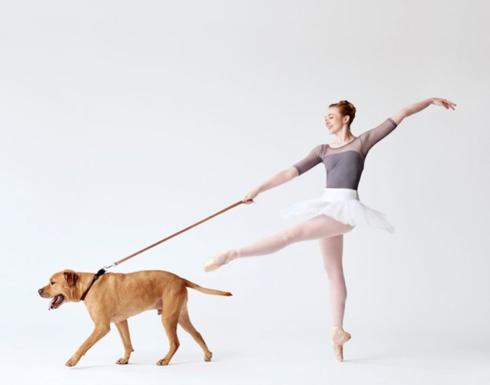 """AI-AP   Pro Photo Daily » Spotlight: """"What If We Did Pictures of Dancers with Dogs?"""""""