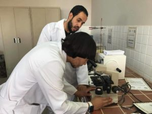 Osama al-Salhin at the laboratory of Al-Arab Medical University's Faculty of Pharmacy, in Benghazi.