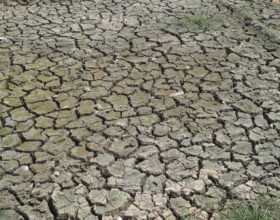 New Data Show Water Scarcity Is Increasing in the Arab World, Stirring Discussion