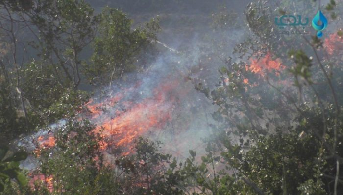 Strong fires spread in different parts of Lebanon and Syria, forcing some residents to flee homes (Photo: Baladi News Network).