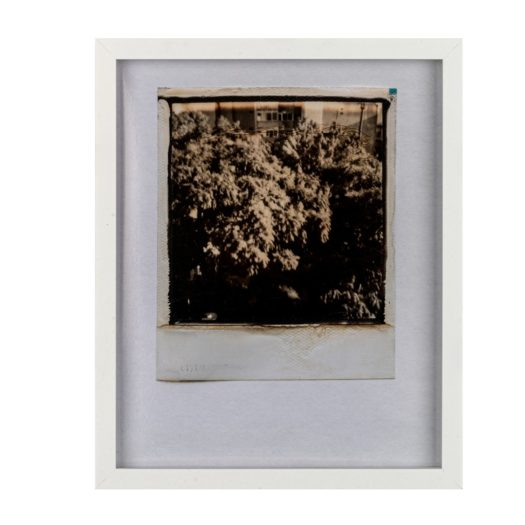 A blurred Beirut scene from Caroline Tabet's series Inner Lives / Previous Lives.
