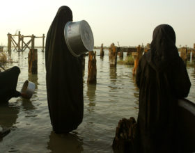 Study Blames Mismanagement for Water Crisis in Southern Iraq