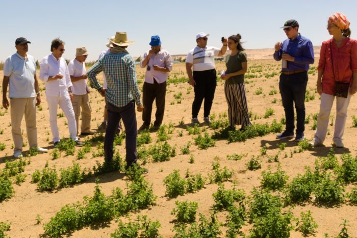 Faculty members from Heliopolis University visit a project area. Climate change and water scarcity issues are important aspects of the new curricula.