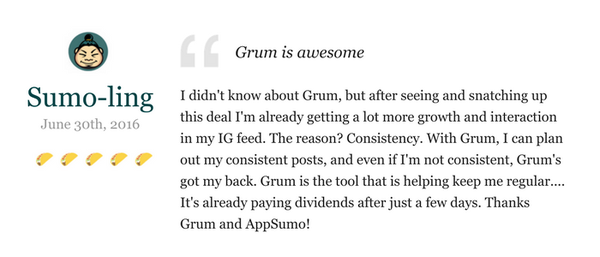 Lifetime Access to Grum Agency Plan