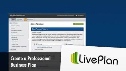 Get a professional business plan