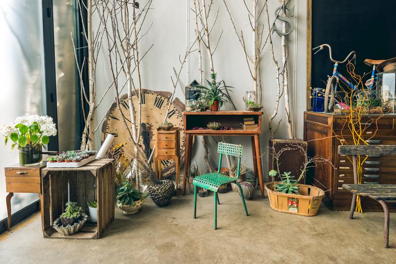 Atelier Poppy Figue
