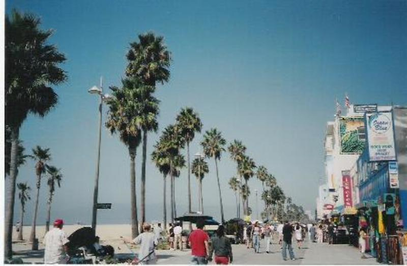P136278-los_angeles-venice_beach