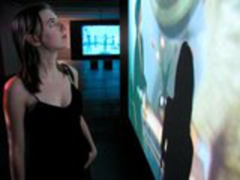 20110510160918-picture_of_me_looking_at_video_art