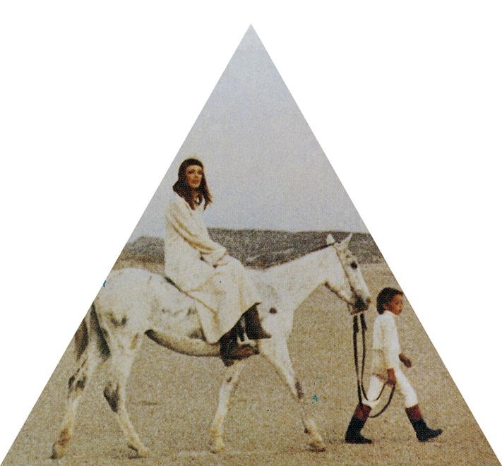 Desertshore-triangle